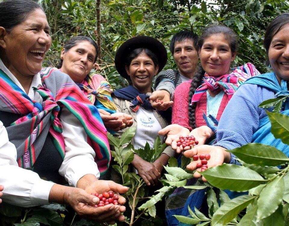 Coffee Growers of the Cooperativa Agraria Cafetalera Valle de Incahuasi in Peru